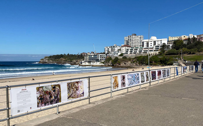 Exhibition at Bondi Beach